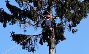 Обрезка  и удаление аварийных деревьев Хмельницкий
