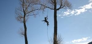 Обрезка  и удаление аварийных деревьев в Хмельницке